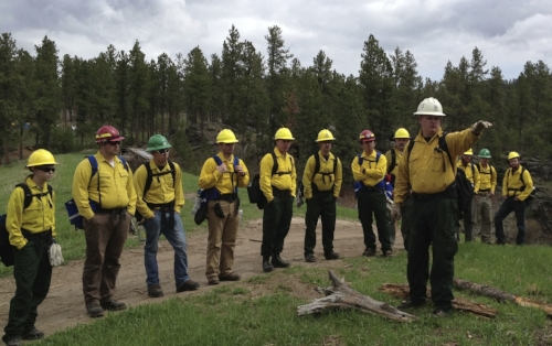 Training - Many of the veterans coming through the program realize how much they enjoy working outdoors and are interested in wildland fire.  We encourage them to pursue their own career choices and even offer to allow them to recieve training and even gain certifications in all fields on the clock.  From attaining wildland fire certifications to commercial drivers license to...