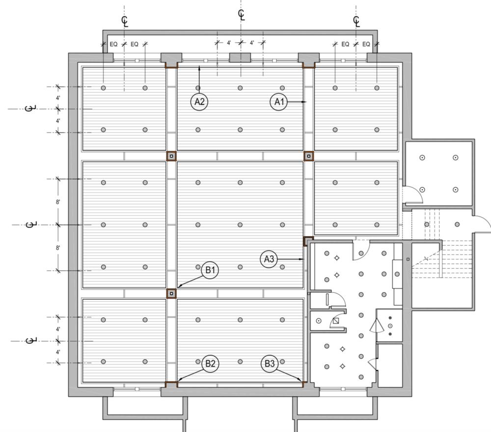 Exercise Room Fuchsia Design Ceiling Grand Rapids Michigan 2.png