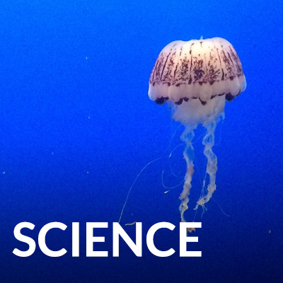 subjectlink-science.jpg