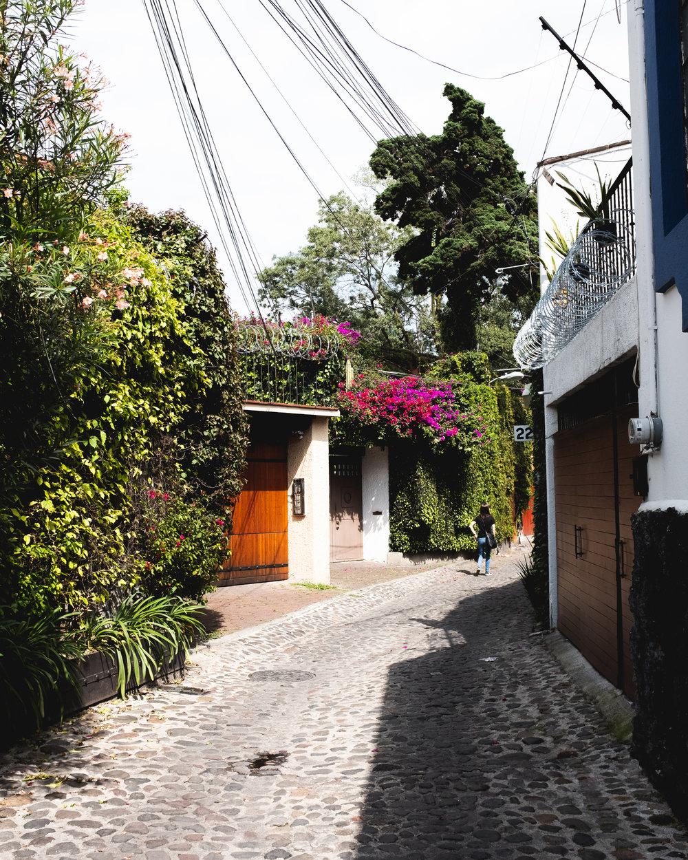 10.11.18 Mexico City-40.jpg