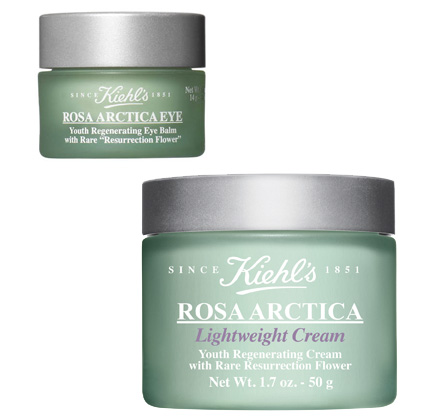 Kiehl's Rosa Arctica Lightweight Cream and Rosa Arctica Eye