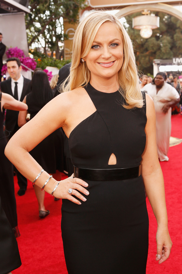 Get the Look: Amy Poehler at the 2014 Golden Globes.