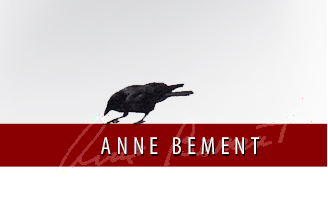 Anne Bement Photography