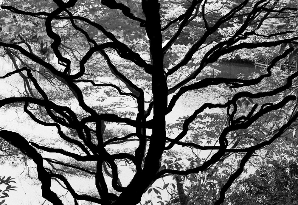 """""""A TREE OF LIFE"""""""