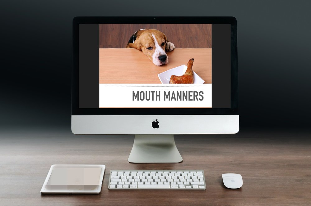 Mouth Manners Webinar Promo Pic.jpg