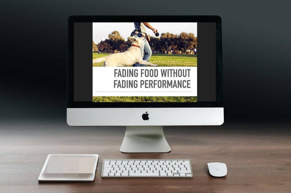 Fading Food Without Fading Performance Webinar Promo Pic.jpg
