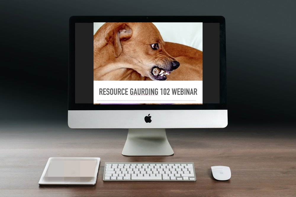 Resource Gaurding 102 Pic.jpg