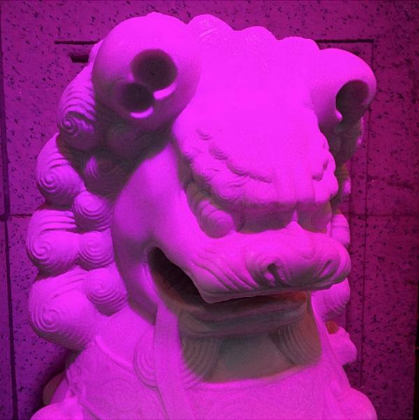 Magenta Lion 1_4252_1024_Fotor.jpg