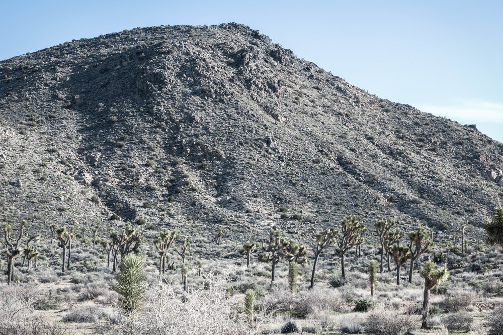 unsettle-co-lifestyle-blog-spaces-joshua-tree-national-park-barren-landscape