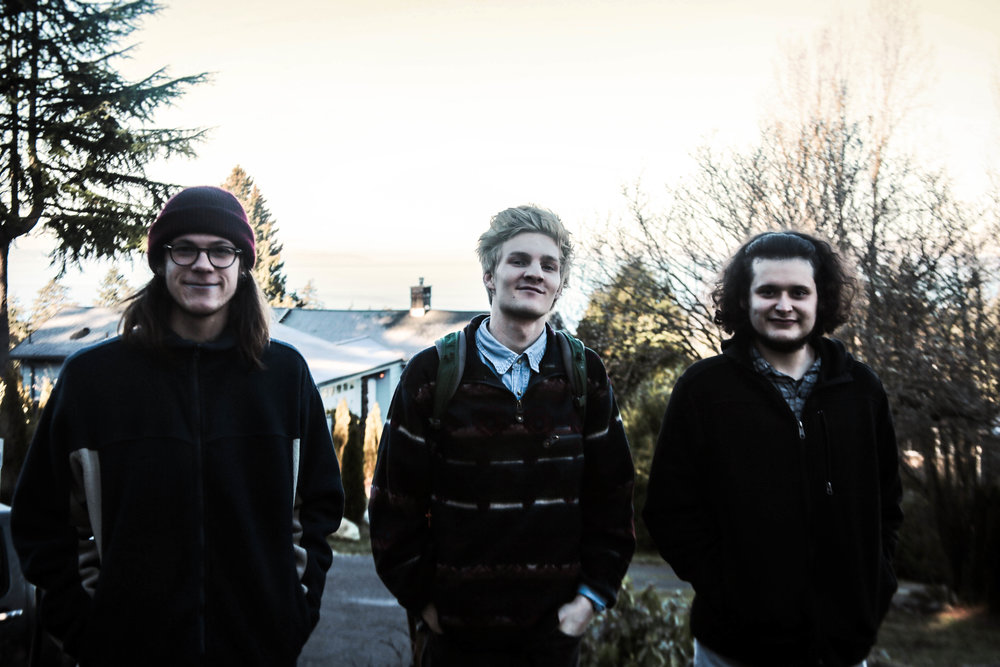 portrait of the band members of animals in the attic