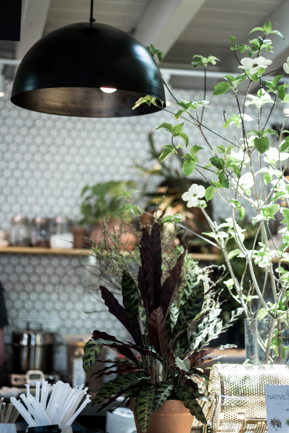 decor lighting and planters at communal coffee