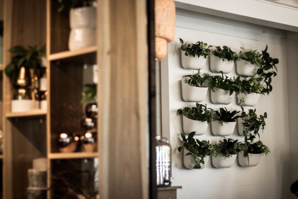 wall planters and wall succulent decor