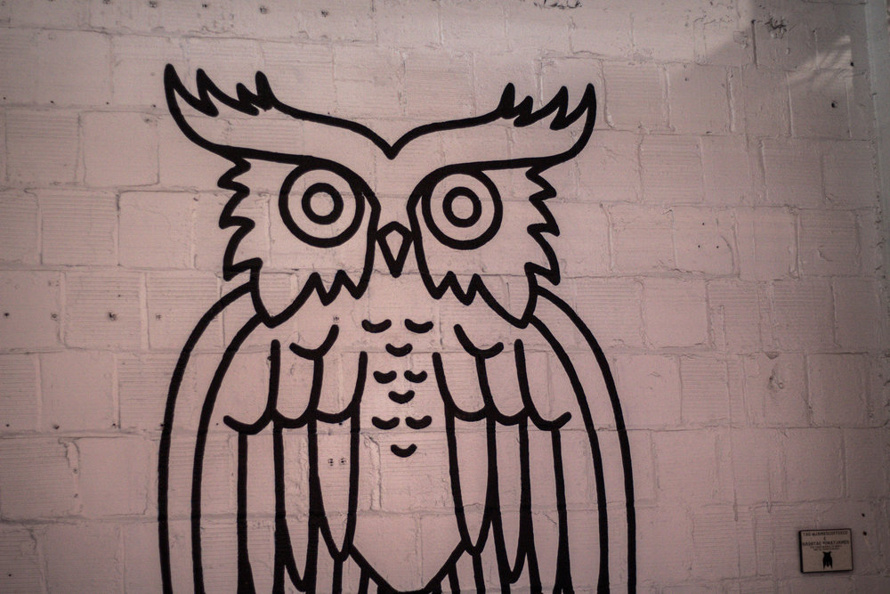 james-coffee-owl-spaces-unsettle-co
