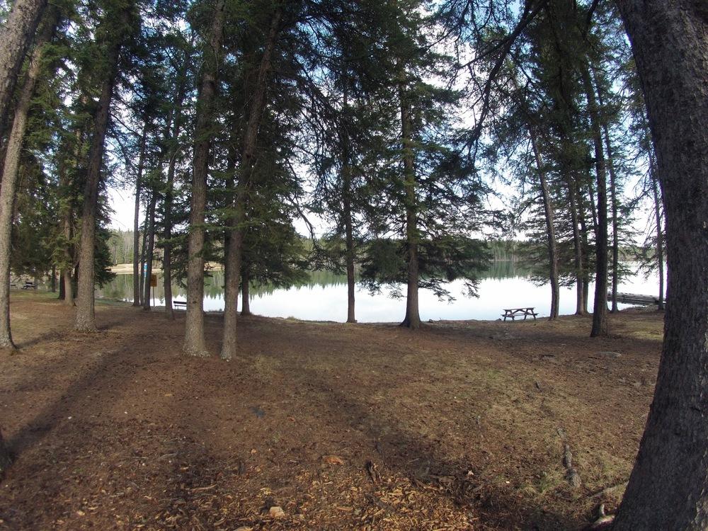 lakethruthetrees.jpg