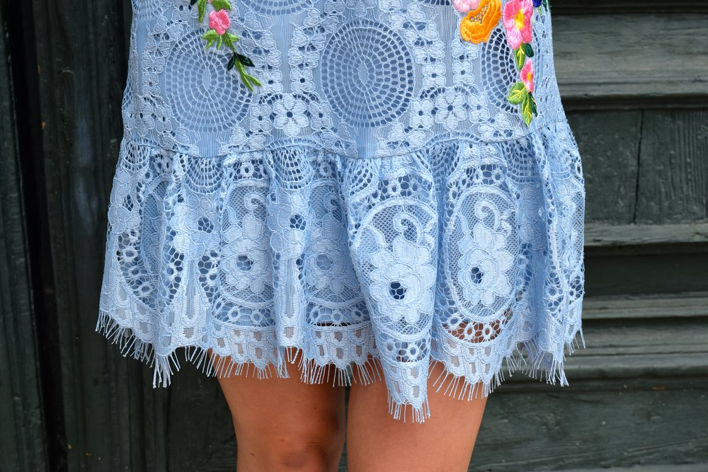Nicole Miller Embroidered Lace Dress