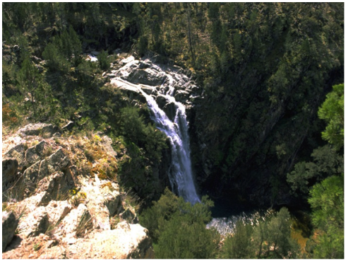 This is the area known as Groves Creek Falls, Abercrombie Caves, where Ranger was found by a family out bushwalking for the day