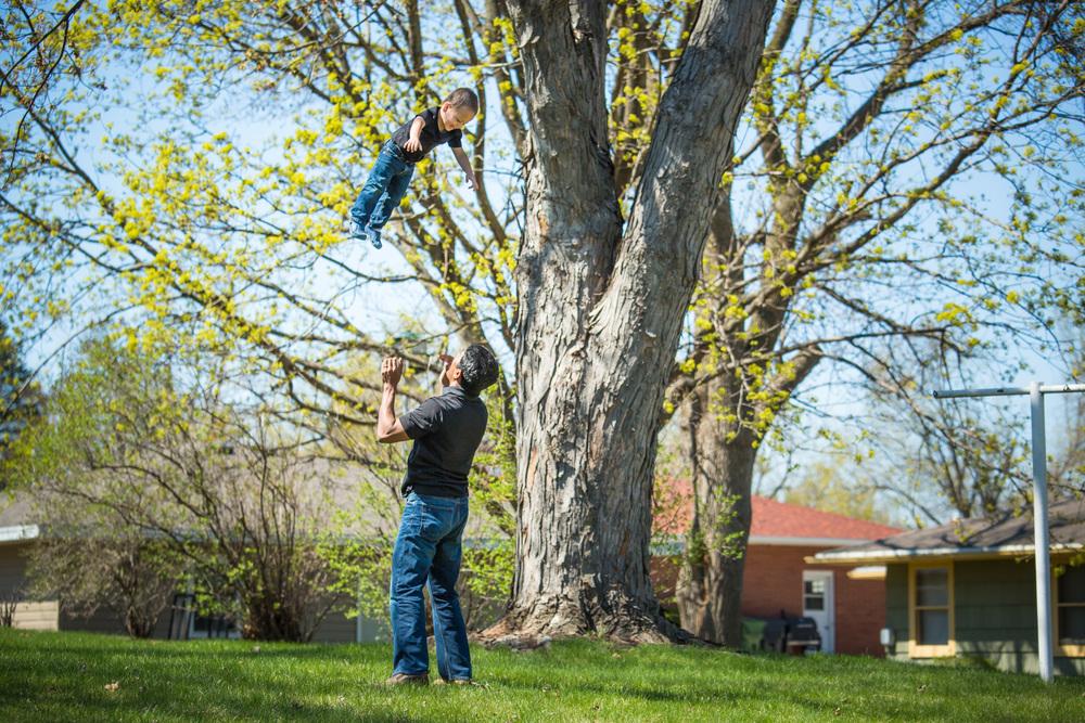 fall from tree-1.jpg