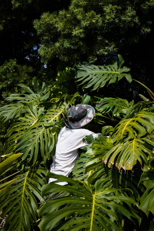 Gardeners. Hilo, Hawaii