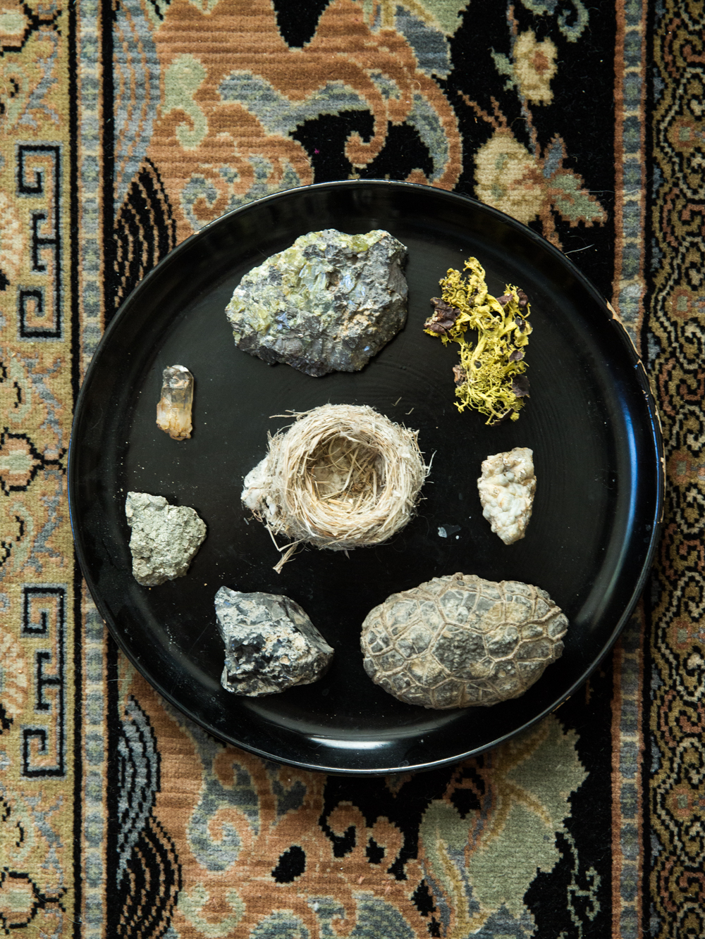 """I've always been interested in rocks. I like speculating about how they got to be how they are."" -Jane Rybus"