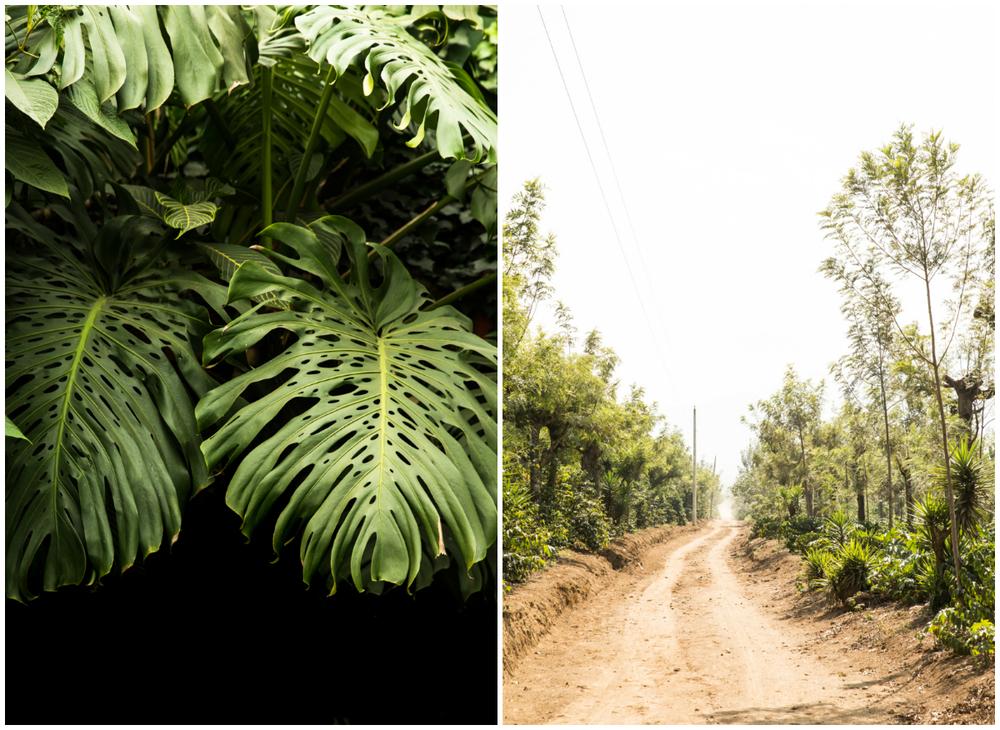 GRybus-Blog-Guate-3.jpg