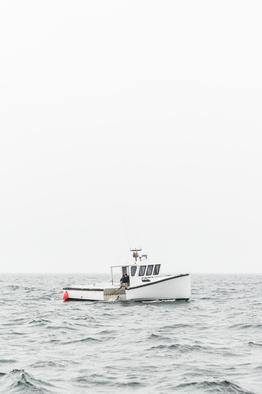 GRybus-Blog-Dogfish-9787.jpg