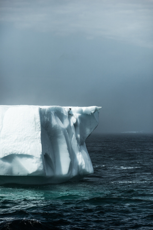 Icebergs, Newfoundland