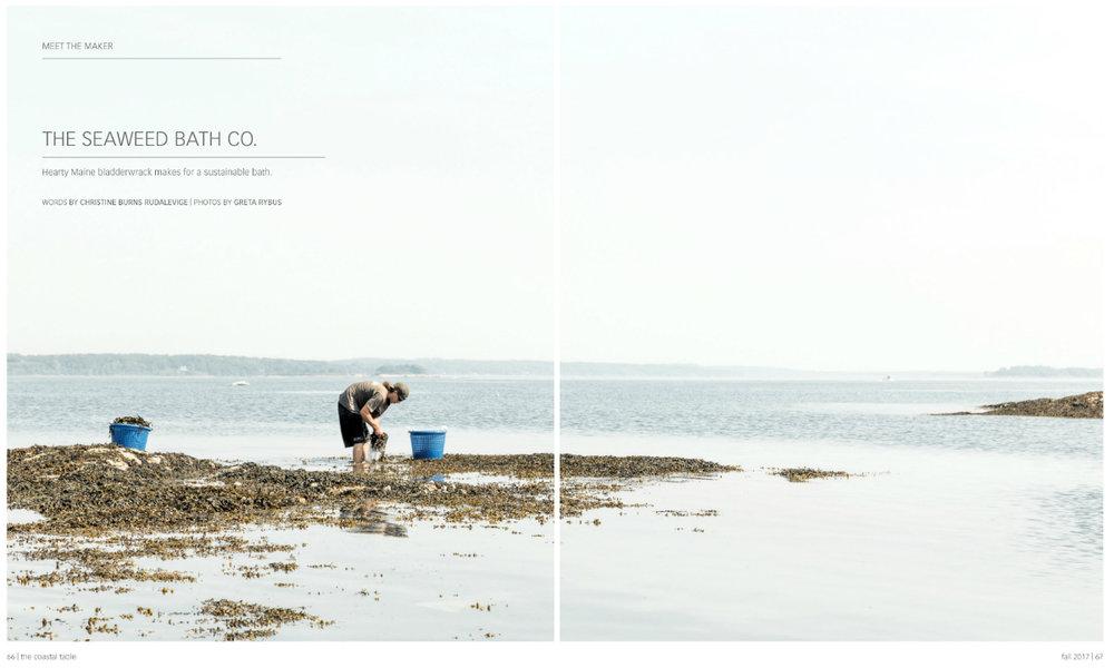GRybus-Blog-Seaweed-Tear.jpg