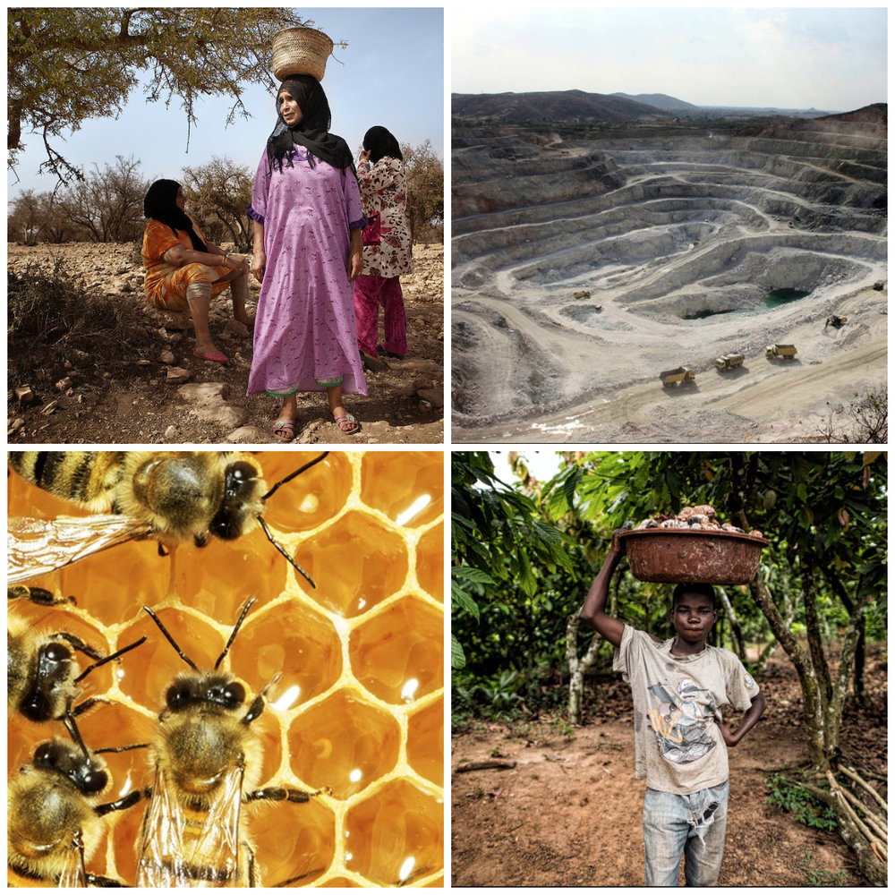 Images sourced online:. Clockwise from top left: argan harvesting in Morocco, talc mining, beehive, cocoa harvesting in Africa.