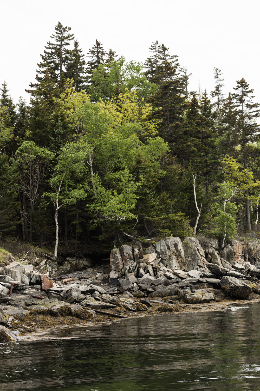 GretaRybus-AnnakBrooke-Blog2-01-3422.jpg