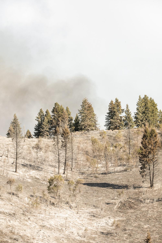 GretaRybus-Idaho-Climate-Web-55-4108.jpg