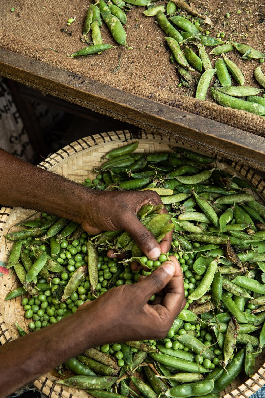 Shelling peas, Zanzibar