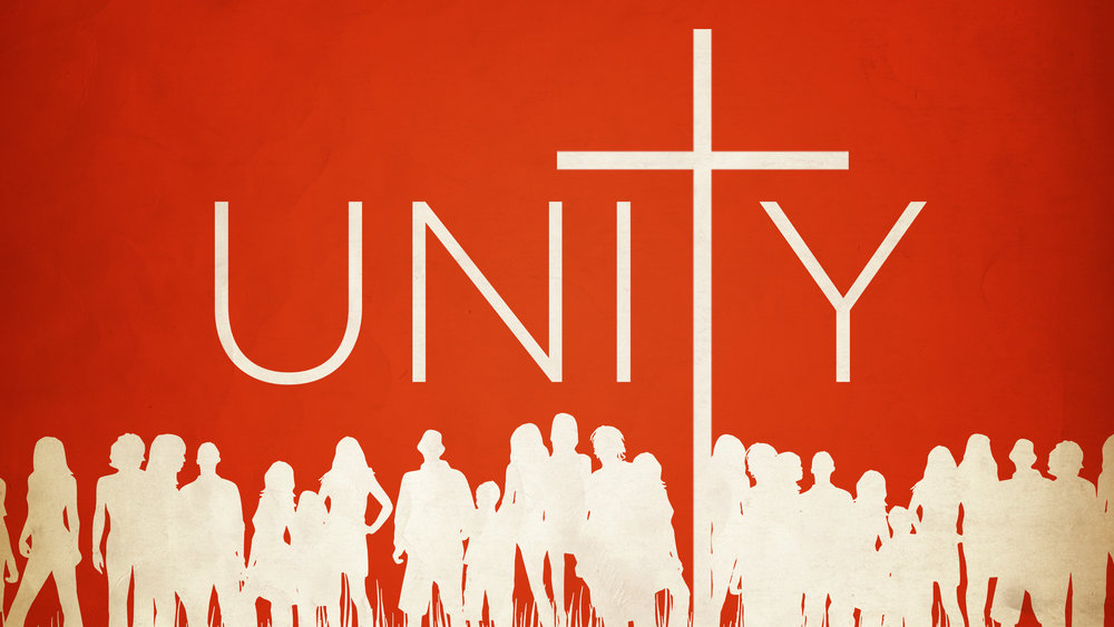 unity-#7.jpg