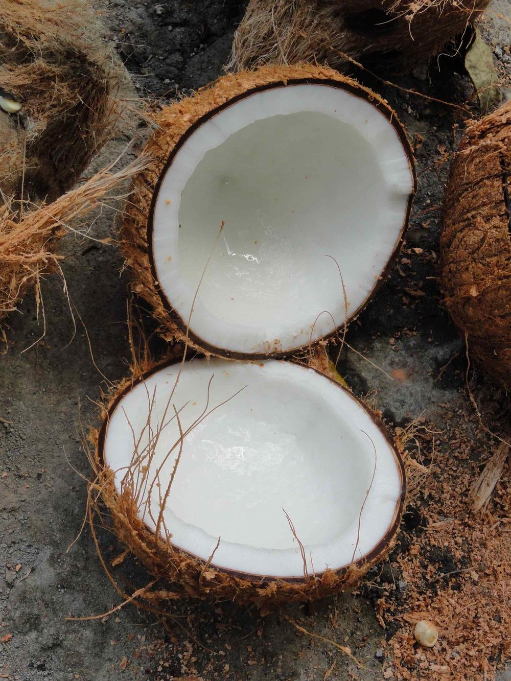 4_coconut half