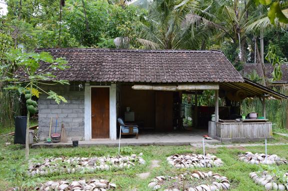 Kubu Room Outside