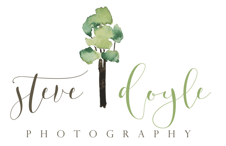 South-East Queensland and Byron Bay Wedding Photographer | Steve Doyle Photography