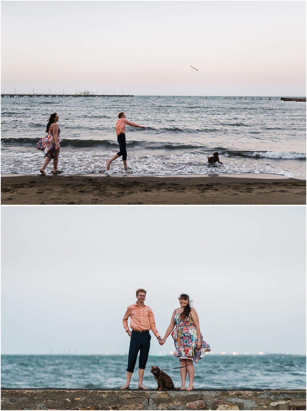 brisbane-brighton-sandgate-engagement-pet-photography-cute-doggo34.jpg