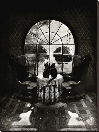 Room Skull by Ali Gulek