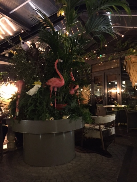Flamingos a go-go at  Hoxton Grill