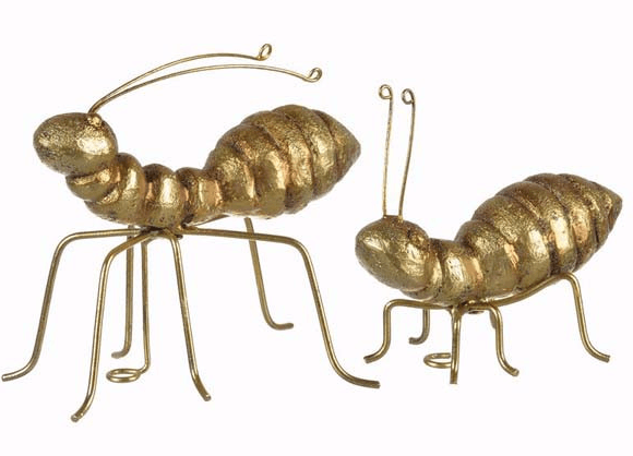 Gold ants £45 Abigail Ahern