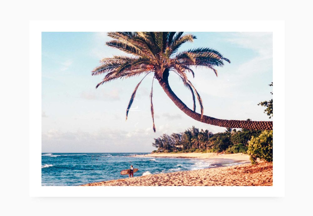 Palm Trees and surfer at Pipeline | Karl Mackie Photography | Art Print