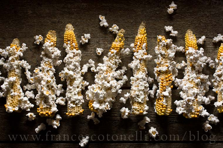 Popcorn on Cob