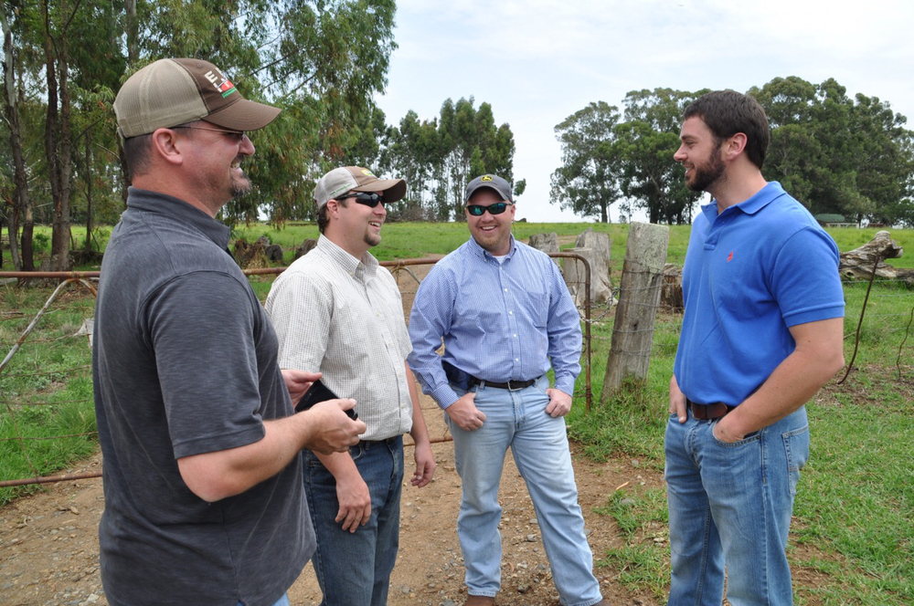 Jared Hicks, Clint Galiano, Heath Gajan and Zach Hankins talk cattle on the Leeubank Farm.