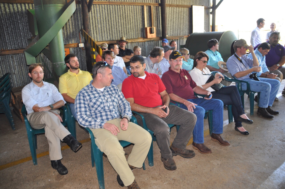 Class XIV waits to be briefed on the tree breeding program of York Timbers in Sabie, SA.