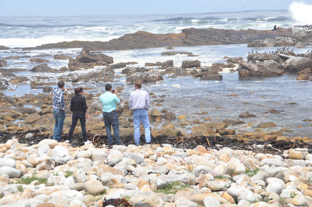 "From left to right: Billy Patout, Hester Bourdier, Brandon Dubois and Patrick Frischhertz check out the ""breaks"" of Atlantic waves near the Cape of Good Hope."