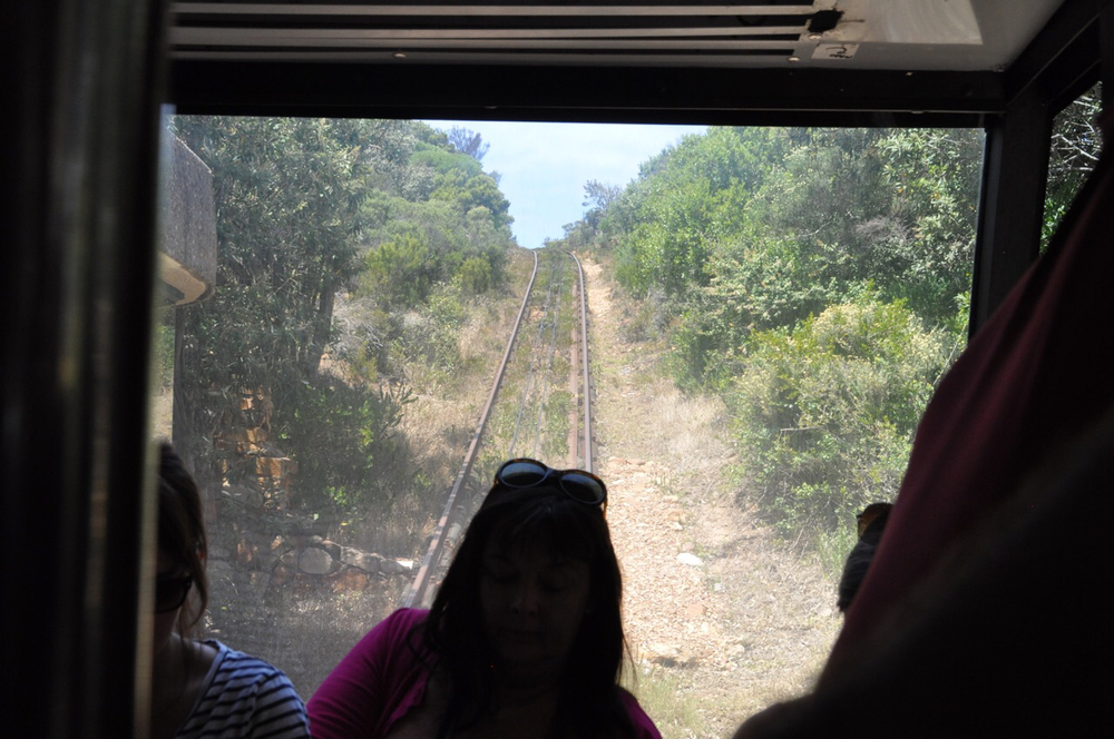 "Inside the ""Flying Dutchman"" as the cable pulls the funicular to the summit of the Cape Point."