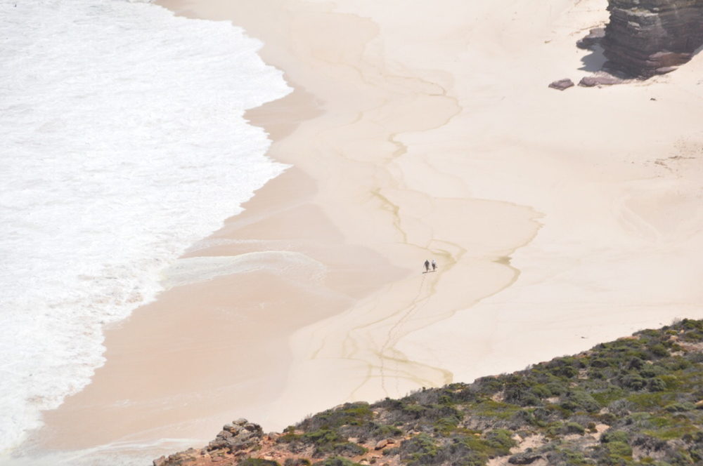 A couple check out the lonely beach as seen from the Cape Point Lighthouse. This beach is located behind the Cape of Good Hope.