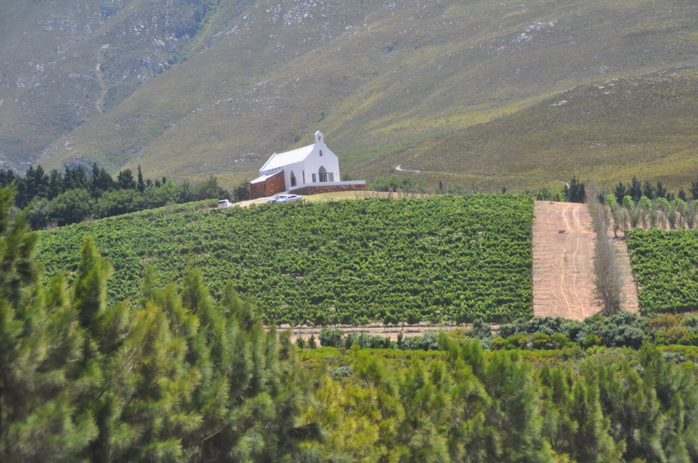 A chapel sits on top of a hill overlooking the vineyard.