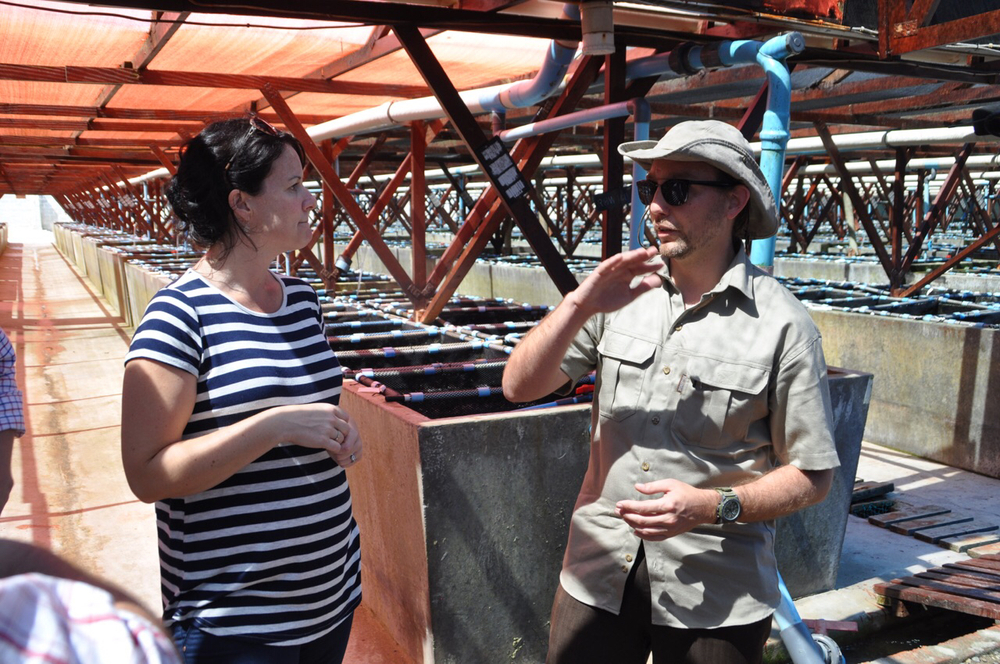 Dr. Chris Green talks aquaculture with Heart of Abalone tour guide, Mathilde Le Riche in the tank room.