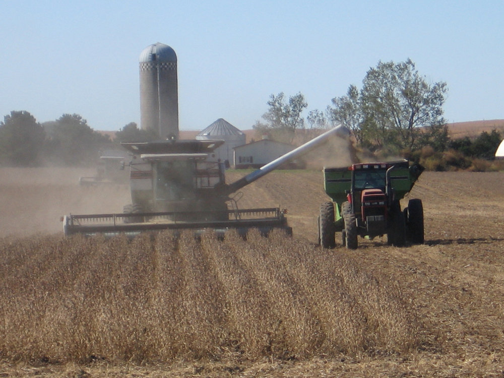 soybean-harvest.jpg