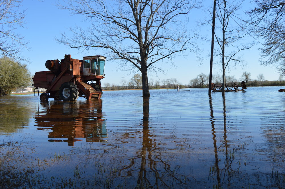A combine and other implements stranded in standing water off highway 165, north in Ouachita Parish.   Hay bale in a flooded pasture in western West Carroll Parish